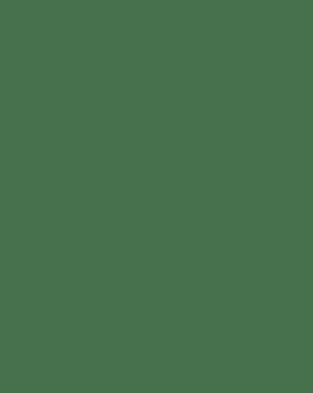 Washing Powder & Dishwashing Detergent